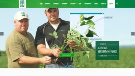 Alpine website screenshot by Urban Block Media in Ottawa