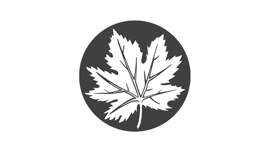 Headstone Maple Leaf logo by Urban Block Media in Ottawa
